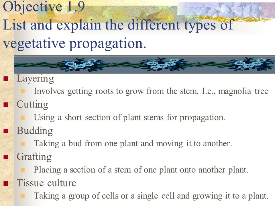 Objective 1.9 List and explain the different types of vegetative propagation. Layering Involves getting roots to grow from the stem. I.e., magnolia tr