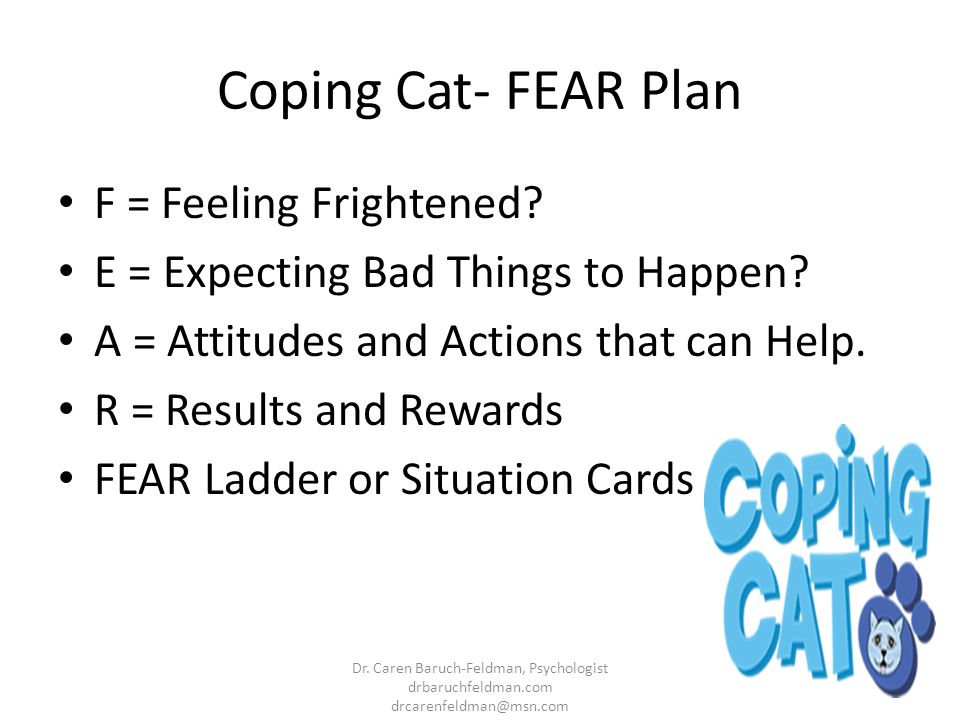 Coping Cat- FEAR Plan F = Feeling Frightened? E = Expecting Bad Things to Happen? A = Attitudes and Actions that can Help. R = Results and Rewards FEA