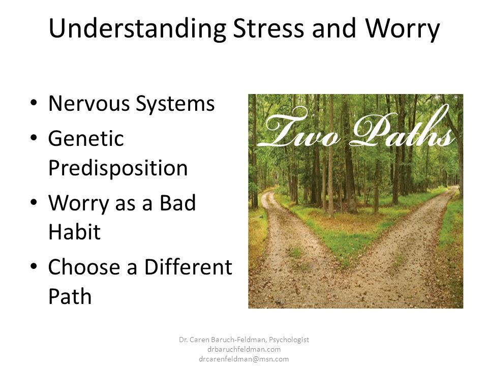 Understanding Stress and Worry Nervous Systems Genetic Predisposition Worry as a Bad Habit Choose a Different Path Dr. Caren Baruch-Feldman, Psycholog