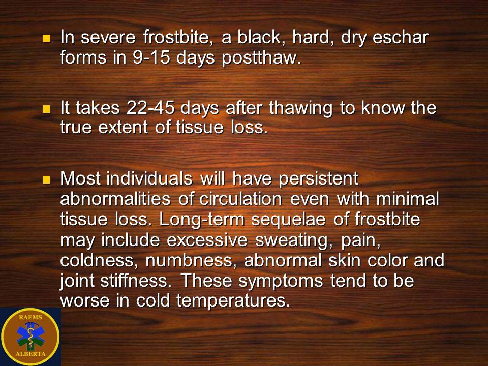 In severe frostbite, a black, hard, dry eschar forms in 9-15 days postthaw. In severe frostbite, a black, hard, dry eschar forms in 9-15 days postthaw