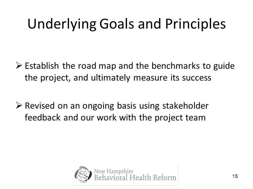 15 Underlying Goals and Principles Establish the road map and the benchmarks to guide the project, and ultimately measure its success Revised on an on