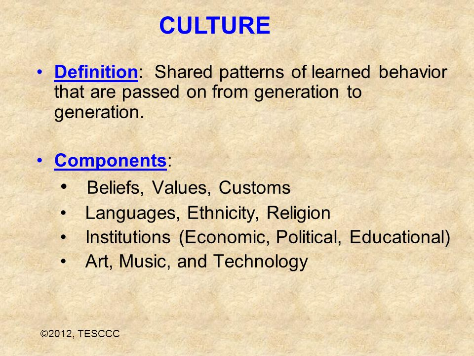 Definition: Shared patterns of learned behavior that are passed on from generation to generation. Components: Beliefs, Values, Customs Languages, Ethn