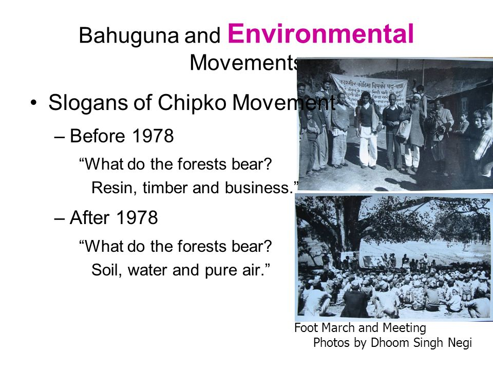 Bahuguna and Environmental Movements Slogans of Chipko Movement –Before 1978 What do the forests bear? Resin, timber and business. –After 1978 What do