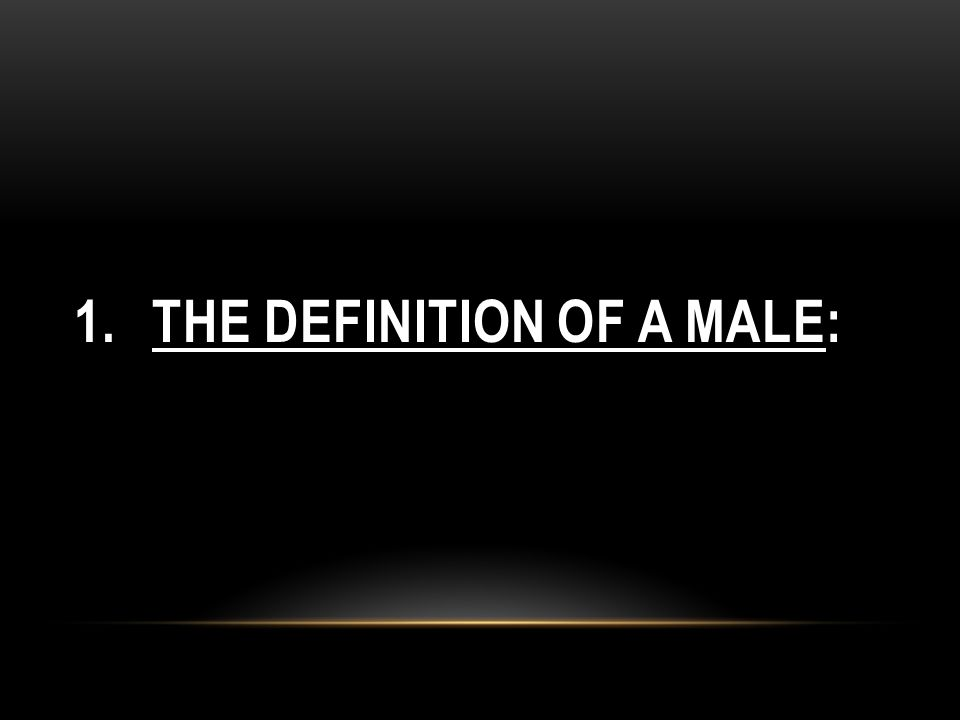 1.THE DEFINITION OF A MALE: