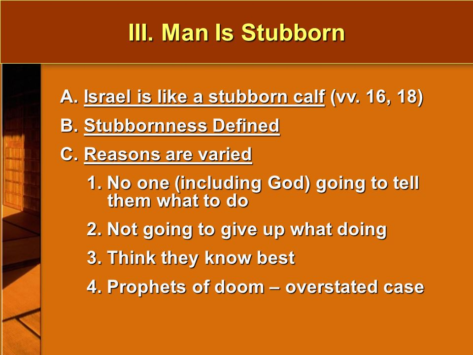 III. Man Is Stubborn A. Israel is like a stubborn calf (vv.
