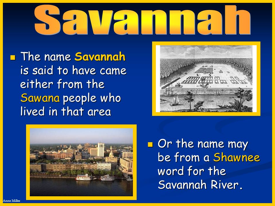 Anne Miller The name Savannah is said to have came either from the Sawana people who lived in that area The name Savannah is said to have came either