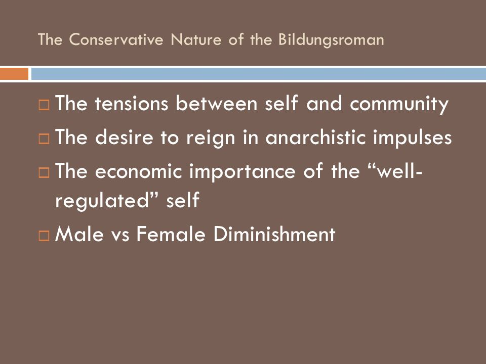 The Conservative Nature of the Bildungsroman The tensions between self and community The desire to reign in anarchistic impulses The economic importan