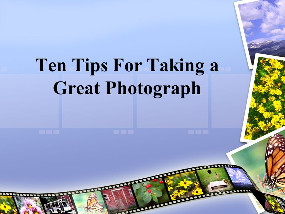 Ten Tips For Taking a Great Photograph