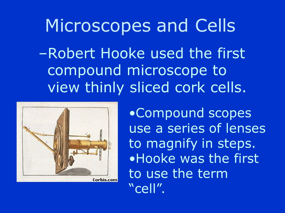 Microscopes and Cells 1600s. –Anton van Leeuwenhoek first described living cells as seen through a simple microscope.