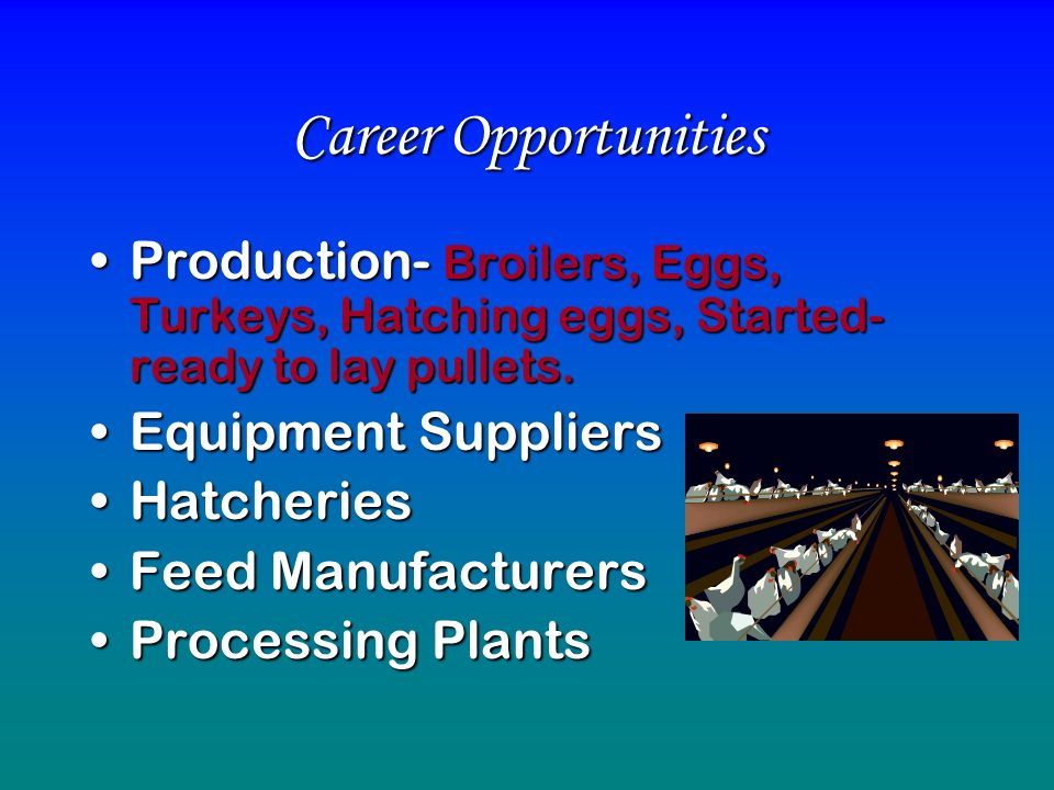 Career Opportunities Production- Broilers, Eggs, Turkeys, Hatching eggs, Started- ready to lay pullets.Production- Broilers, Eggs, Turkeys, Hatching e
