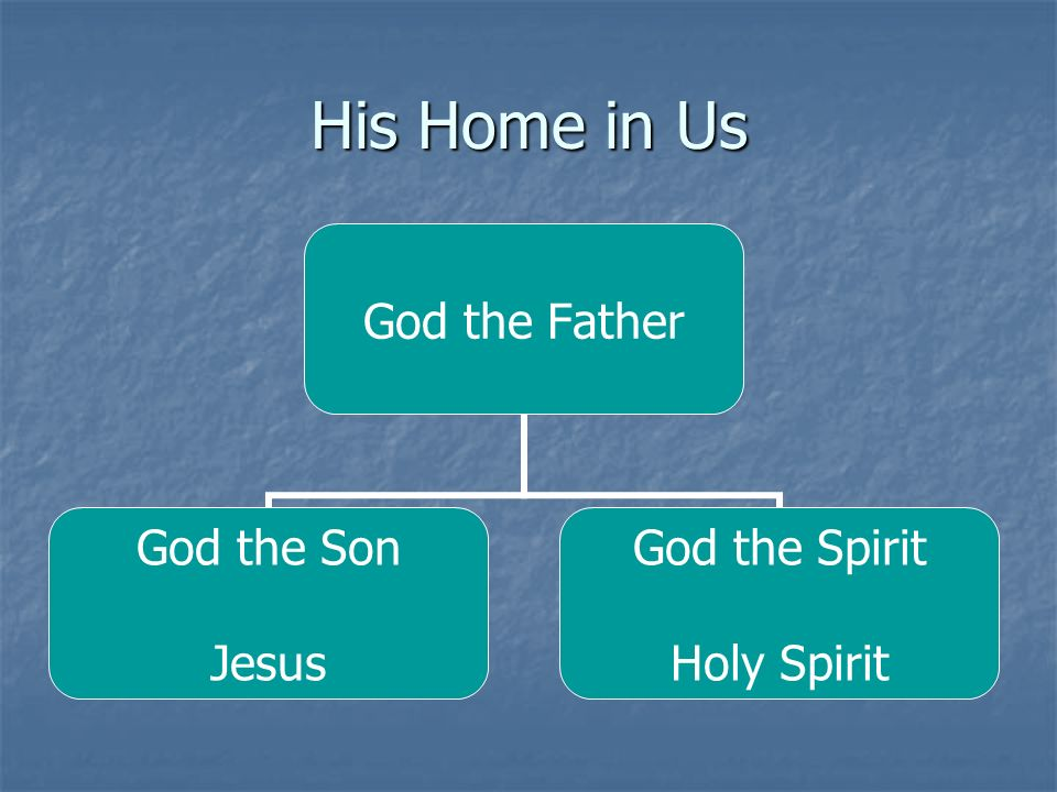 God the Father God the Son Jesus God the Spirit Holy Spirit
