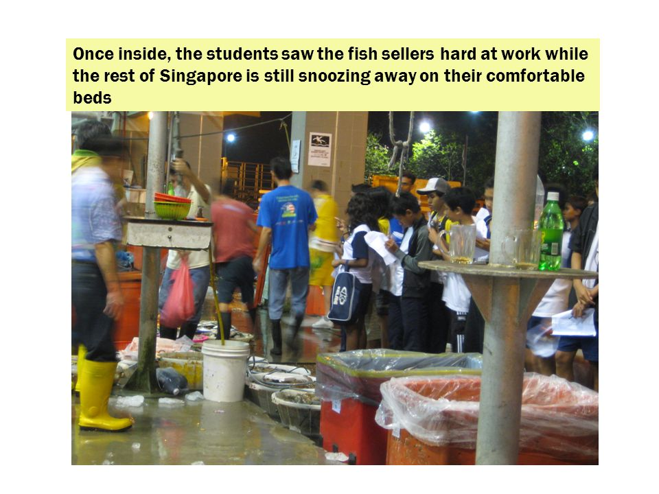 Once inside, the students saw the fish sellers hard at work while the rest of Singapore is still snoozing away on their comfortable beds