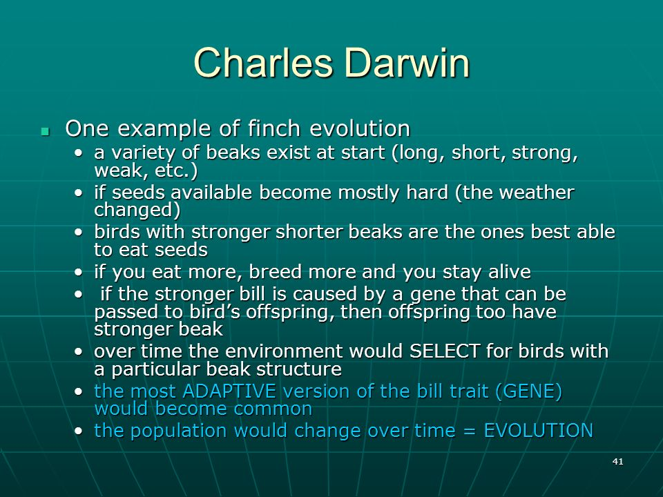 41 Charles Darwin One example of finch evolution One example of finch evolution a variety of beaks exist at start (long, short, strong, weak, etc.)a v