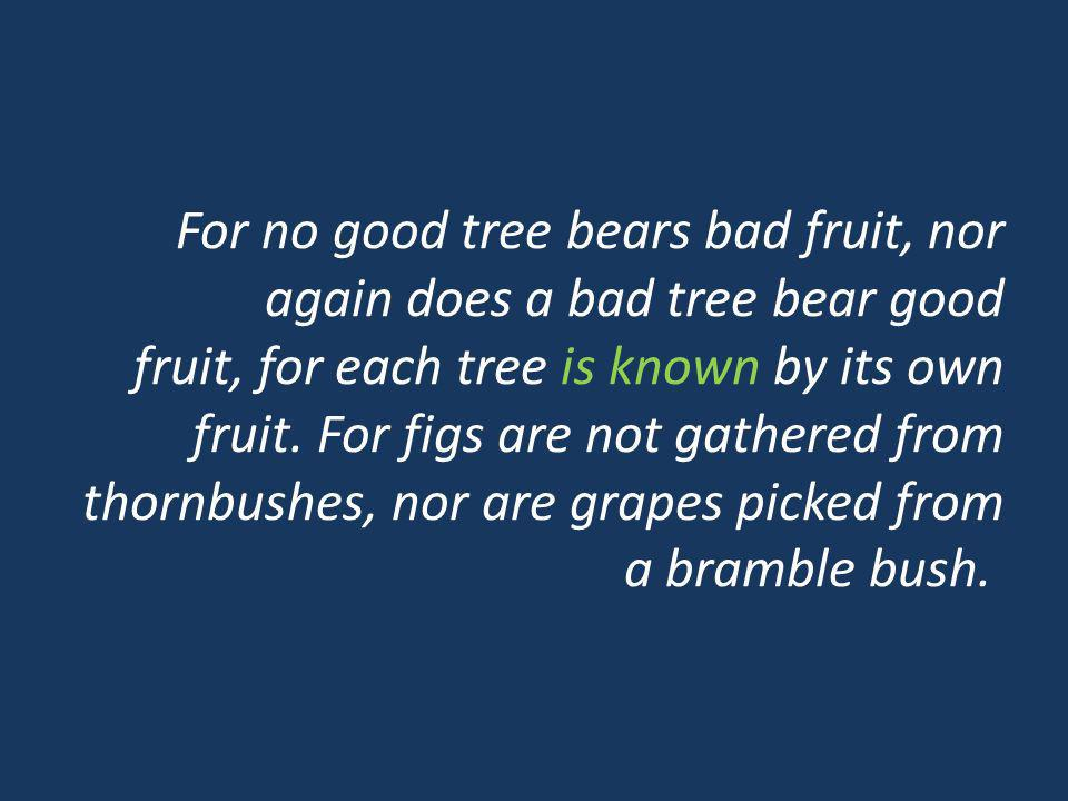 For no good tree bears bad fruit, nor again does a bad tree bear good fruit, for each tree is known by its own fruit.