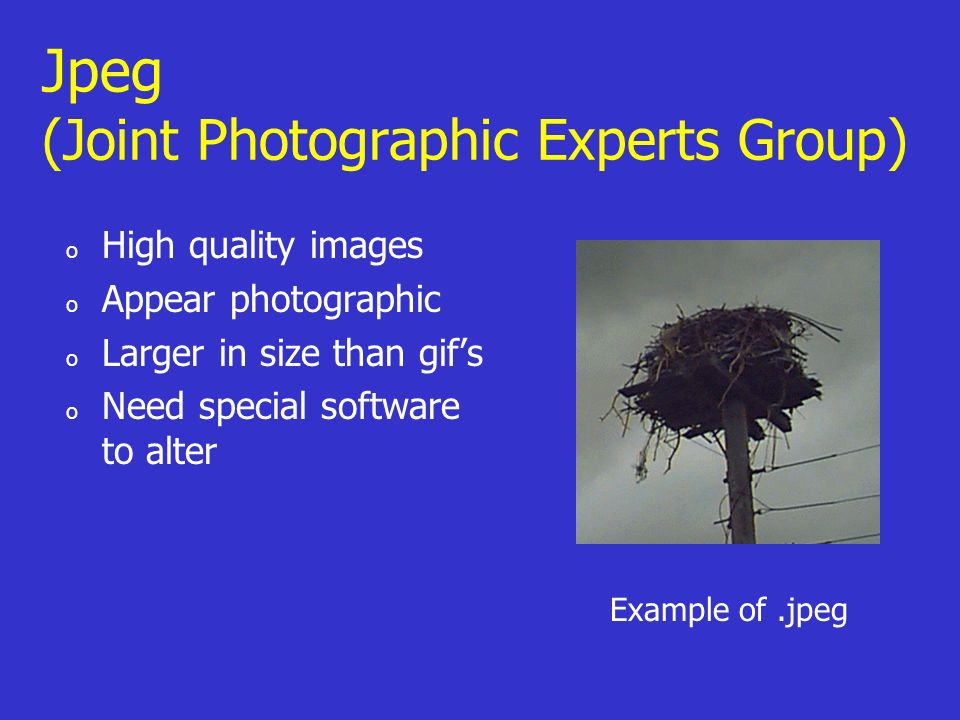 Jpeg (Joint Photographic Experts Group) o High quality images o Appear photographic o Larger in size than gifs o Need special software to alter Example of.jpeg