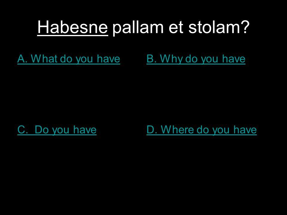 Habesne pallam et stolam? A. What do you haveB. Why do you have C. Do you haveD. Where do you have