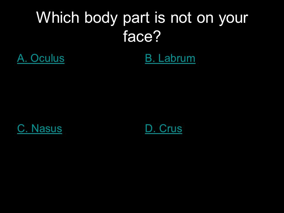 Which body part is not on your face? A. OculusB. Labrum C. NasusD. Crus