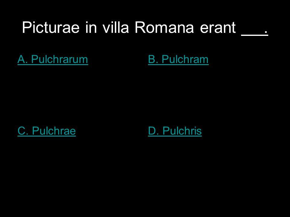 Picturae in villa Romana erant. A. PulchrarumB. Pulchram C. PulchraeD. Pulchris