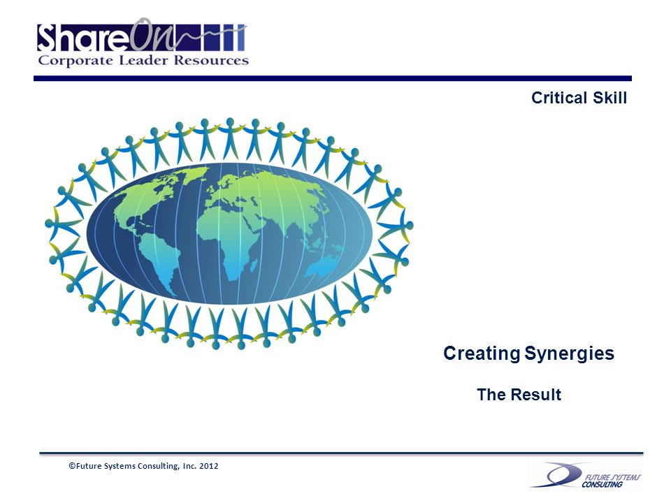 ©Future Systems Consulting, Inc. 2012 Creating Synergies The Result Critical Skill