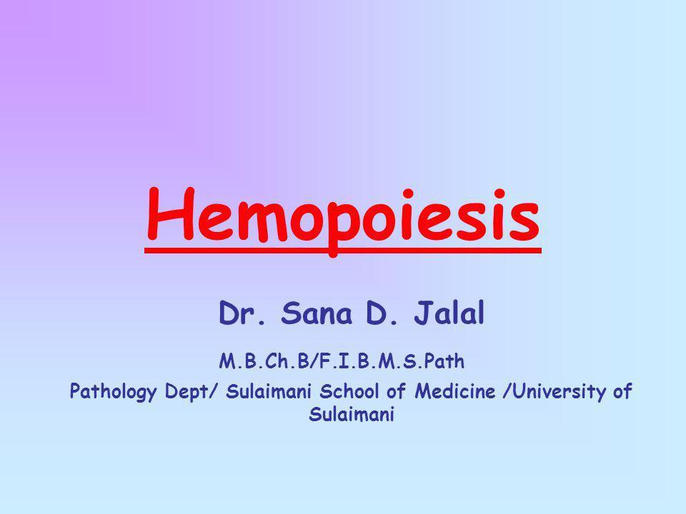 Hemopoiesis Dr. Sana D. Jalal M.B.Ch.B/F.I.B.M.S.Path Pathology Dept/ Sulaimani School of Medicine /University of Sulaimani