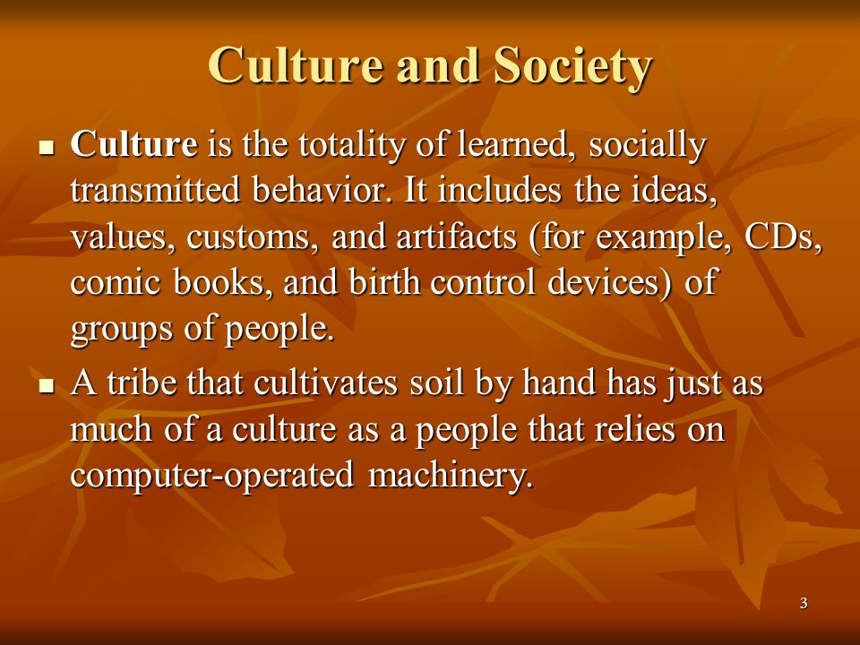 3 Culture and Society Culture is the totality of learned, socially transmitted behavior. It includes the ideas, values, customs, and artifacts (for ex