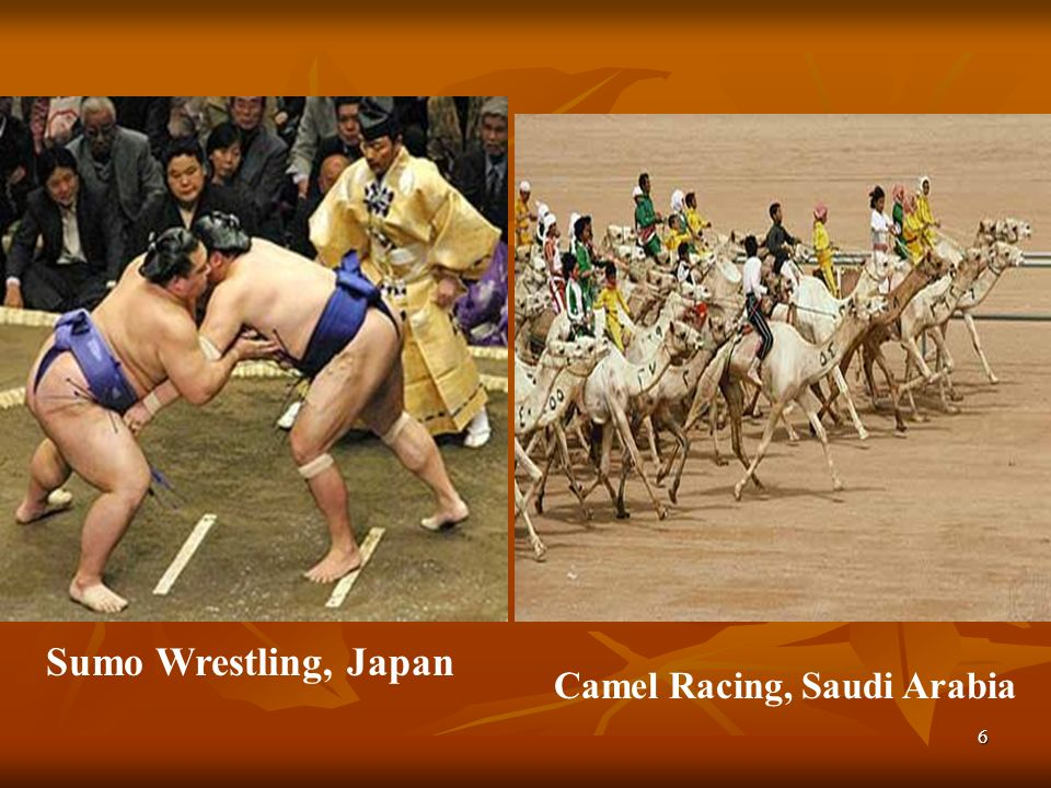 6 Sumo Wrestling, Japan Camel Racing, Saudi Arabia