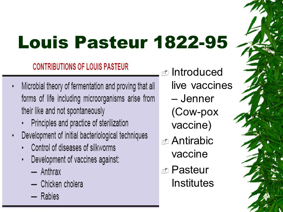 Louis Pasteur 1822-95 Introduced live vaccines – Jenner (Cow-pox vaccine) Antirabic vaccine Pasteur Institutes