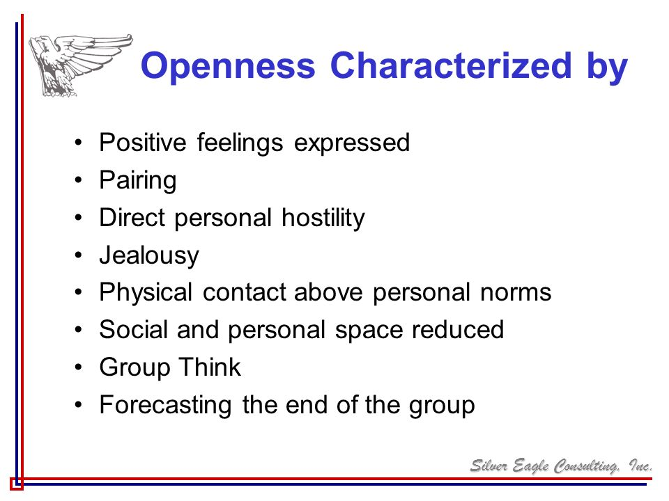 Silver Eagle Consulting, Inc. Openness Characterized by Positive feelings expressed Pairing Direct personal hostility Jealousy Physical contact above