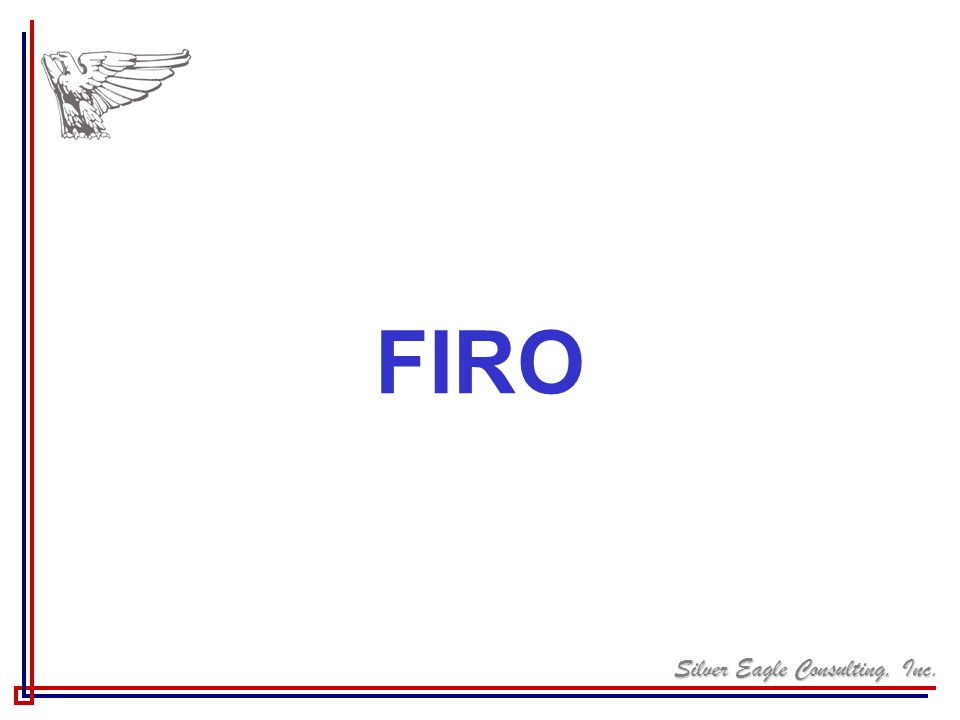 Silver Eagle Consulting, Inc. FIRO
