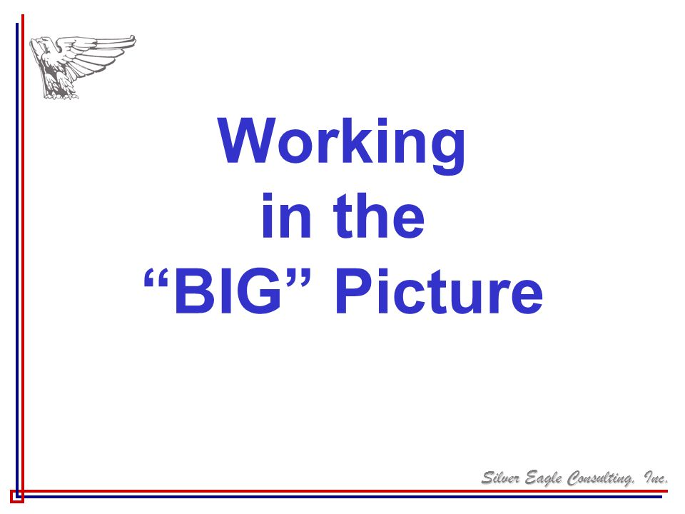 Silver Eagle Consulting, Inc. Working in the BIG Picture