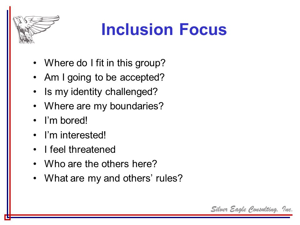 Silver Eagle Consulting, Inc. Inclusion Focus Where do I fit in this group? Am I going to be accepted? Is my identity challenged? Where are my boundar