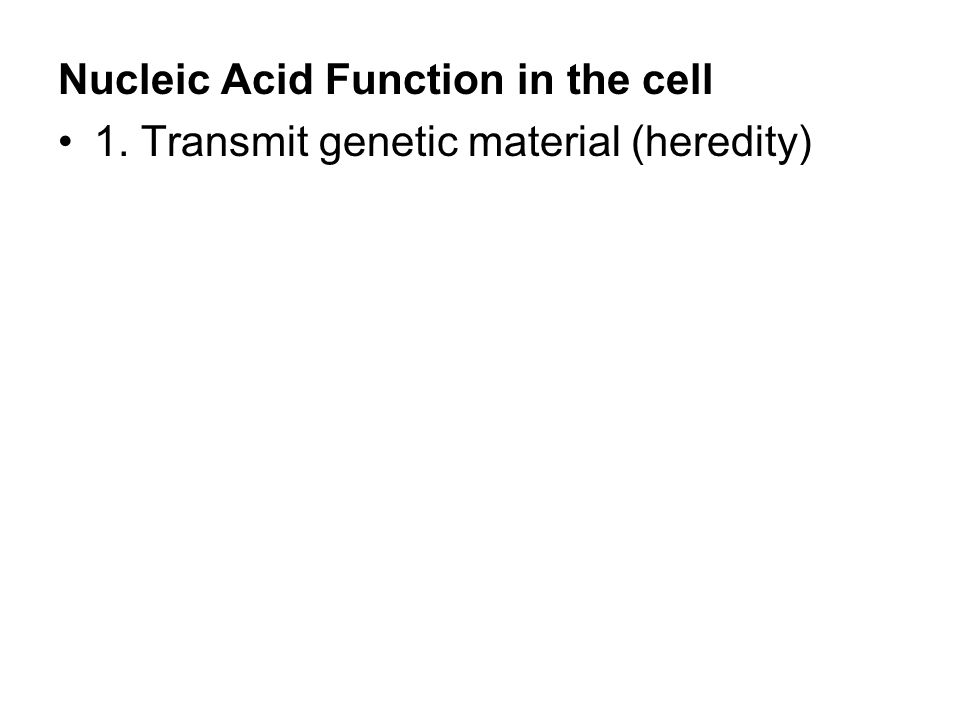 Nucleic Acid Function in the cell 1. Transmit genetic material (heredity)
