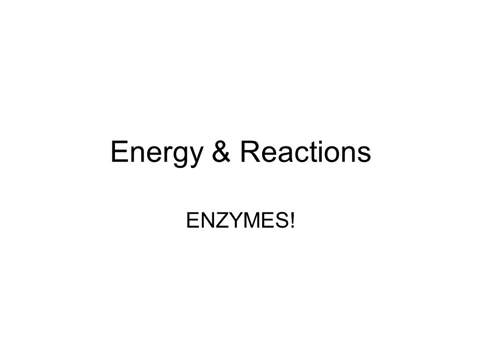 Energy & Reactions ENZYMES!