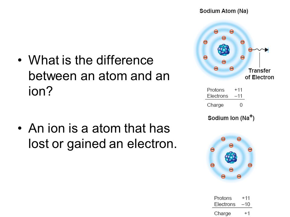 What is the difference between an atom and an ion? An ion is a atom that has lost or gained an electron.