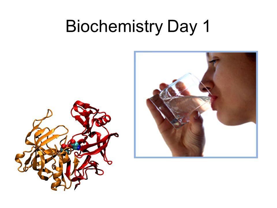 Biochemistry Day 1