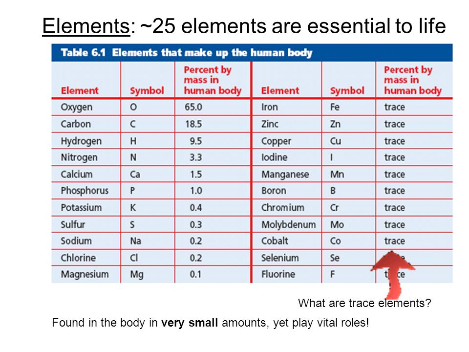 Elements: ~25 elements are essential to life Found in the body in very small amounts, yet play vital roles! What are trace elements?