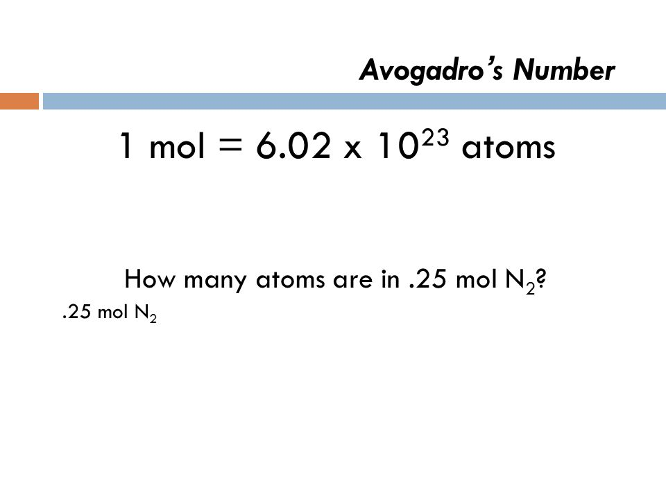 Avogadro s Number 1 mol = 6.02 x 10 23 atoms How many atoms are in.25 mol N 2 ?