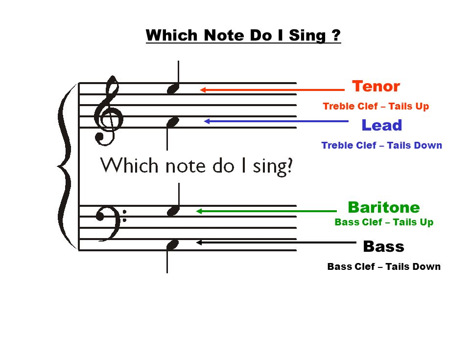 Tenor Treble Clef – Tails Up Lead Treble Clef – Tails Down Baritone Bass Clef – Tails Up Bass Bass Clef – Tails Down Which Note Do I Sing ?