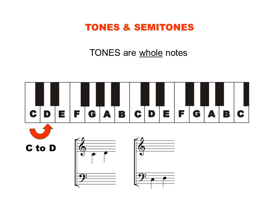 TONES & SEMITONES TONES are whole notes C to D