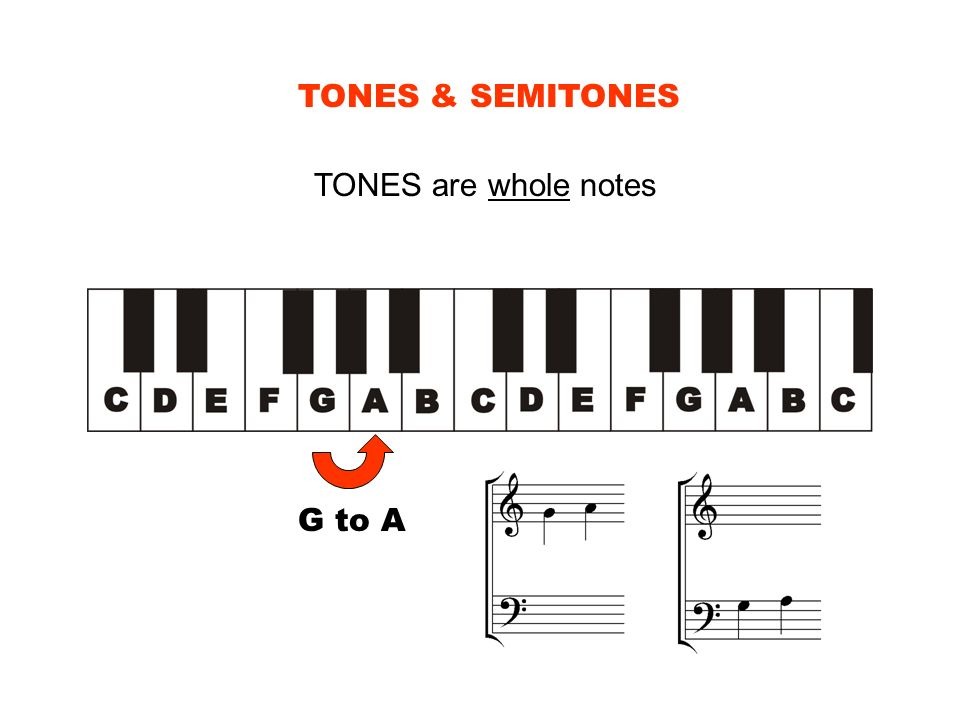 TONES & SEMITONES TONES are whole notes G to A