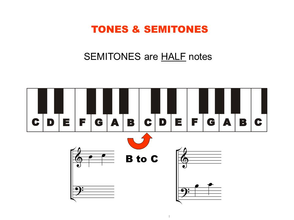 TONES & SEMITONES SEMITONES are HALF notes B to C