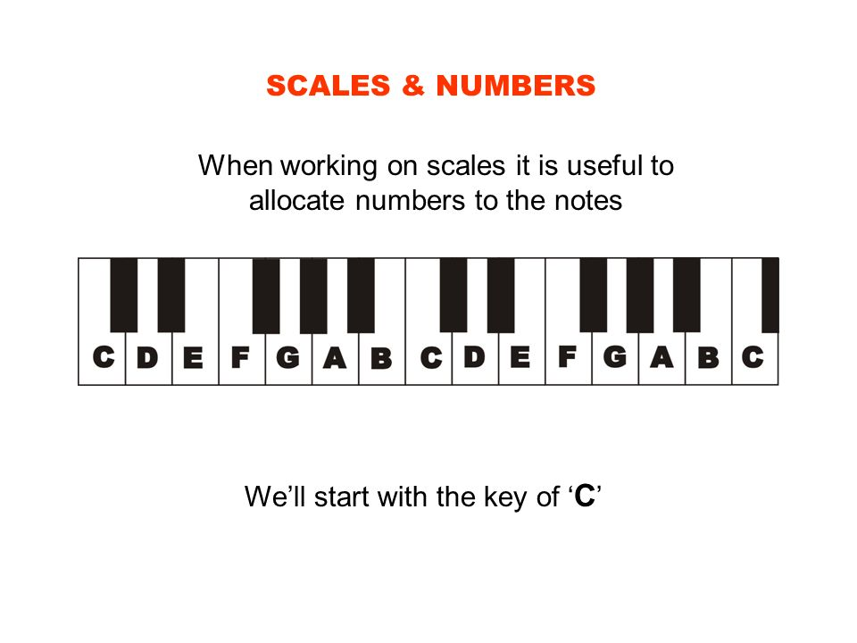 SCALES & NUMBERS When working on scales it is useful to allocate numbers to the notes Well start with the key of C