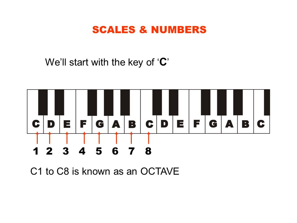 SCALES & NUMBERS Well start with the key of C 1 2 3 4 5 6 7 8 C1 to C8 is known as an OCTAVE