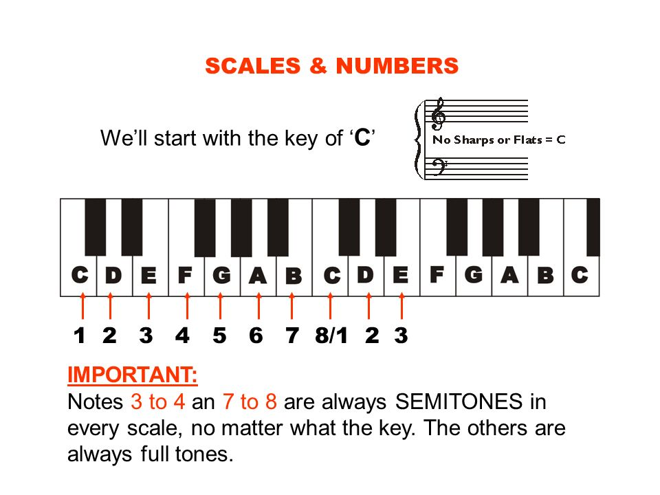 SCALES & NUMBERS Well start with the key of C 1 2 3 4 5 6 7 8/1 2 3 IMPORTANT: Notes 3 to 4 an 7 to 8 are always SEMITONES in every scale, no matter w