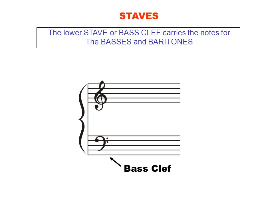 Bass Clef STAVES The lower STAVE or BASS CLEF carries the notes for The BASSES and BARITONES