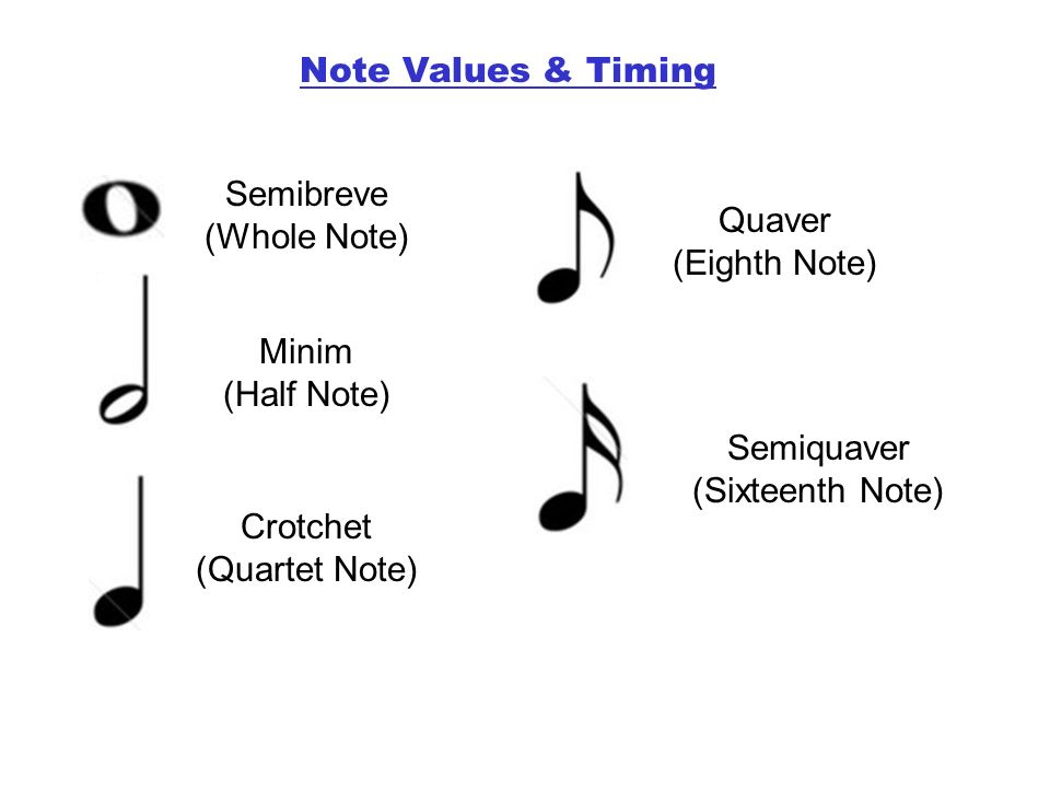 Semibreve (Whole Note) Minim (Half Note) Crotchet (Quartet Note) Quaver (Eighth Note) Semiquaver (Sixteenth Note) Note Values & Timing