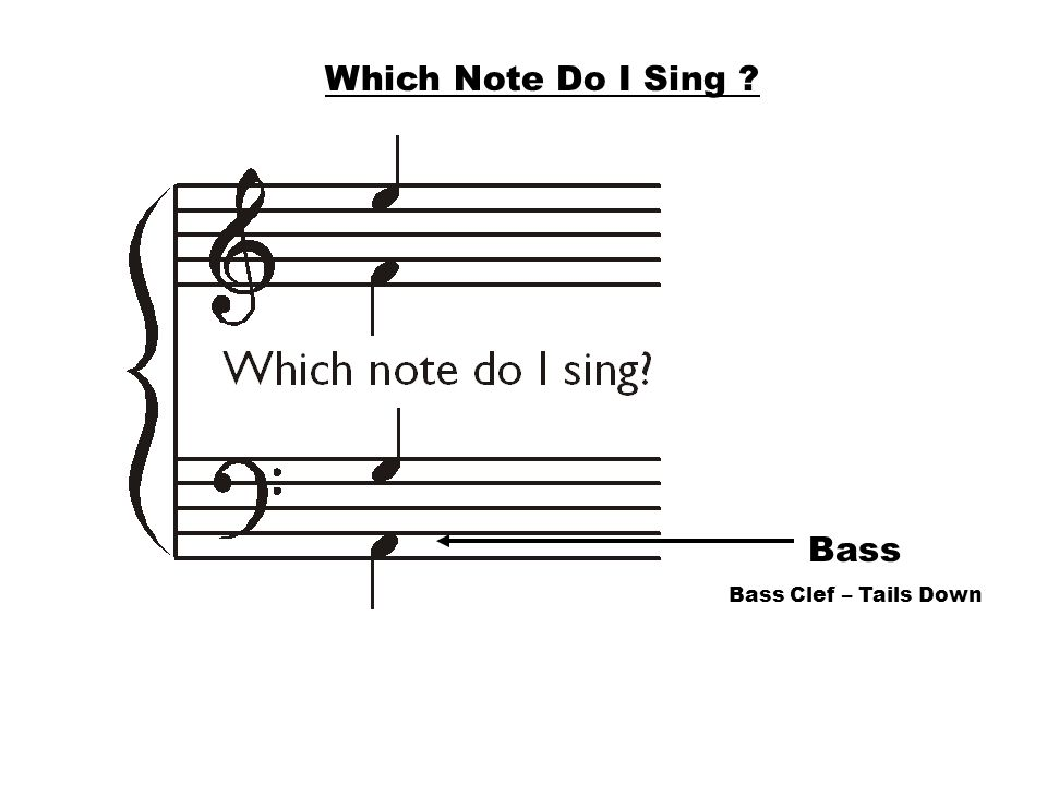 Bass Bass Clef – Tails Down Which Note Do I Sing ?