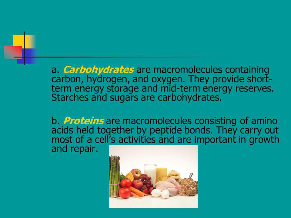 a. Carbohydrates are macromolecules containing carbon, hydrogen, and oxygen. They provide short- term energy storage and mid-term energy reserves. Sta