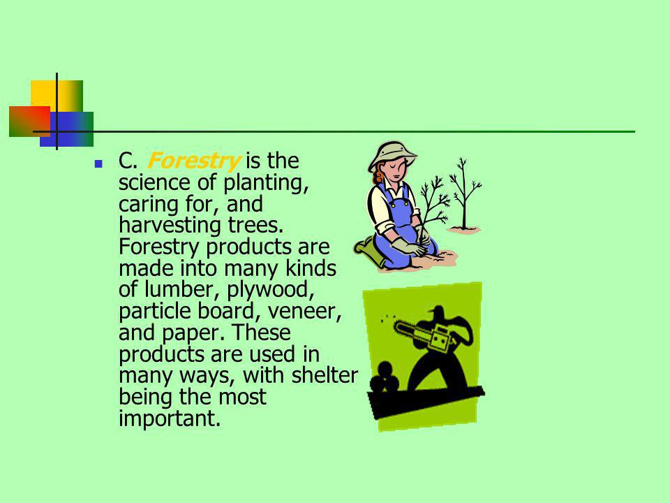 C. Forestry is the science of planting, caring for, and harvesting trees. Forestry products are made into many kinds of lumber, plywood, particle boar