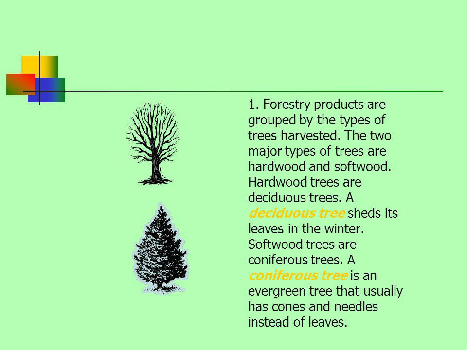 1. Forestry products are grouped by the types of trees harvested. The two major types of trees are hardwood and softwood. Hardwood trees are deciduous